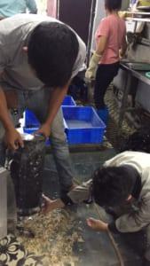 vệ sinh bồn nước nóng máy rửa bát