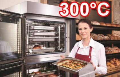 lò nướng 300 độ