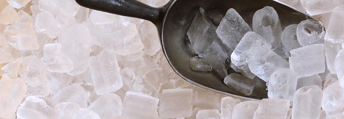 cách chọn máy làm đá cho nhà hàng